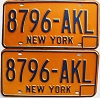 1973 base New York pair # 8796-AKL