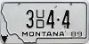 1989 Montana Used Car Dealer # 3UD4-4, Yellowstone County
