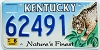 2001 Kentucky Lynx graphic # 62491