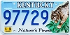 2001 Kentucky Lynx graphic # 97729