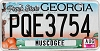 2013 Georgia Peach graphic # PQE3754