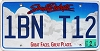 2015 South Dakota graphic # 1BN-T12