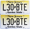 2018 New Jersey Garden State graphic pair # L30-BTE