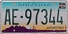 ARIZONA APPORTIONED Cactus graphic license plate # AE-97344