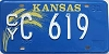 1981 Kansas Wheat graphic # C 619, Clay County