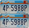 1999 Montana Big Sky graphic pair # 4P-5988P, Missoula County