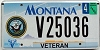 2000 Montana Big Sky Veteran graphic # V25036