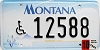 2002 Montana Disabled graphic # 12588