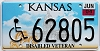 2004 Kansas Disabled Veteran graphic # 62805