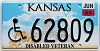 2004 Kansas Disabled Veteran graphic # 62809