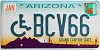 2006 Arizona disabled graphic # BCV66