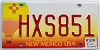 2007 New Mexico Balloon graphic # HXS851