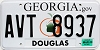 2009 Georgia Peach graphic # AVT-8937