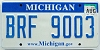 2009 Michigan graphic # BRF-9003