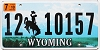 2010 Wyoming # 10157, Lincoln County
