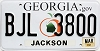 2010 Georgia Peach graphic # BJL-3800