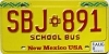 2010 New Mexico School Bus # SBJ-891