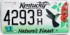 2012 Kentucky Environmental graphic # 4293BH