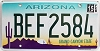 2015 Arizona cactus graphic # BEF2584