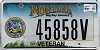 2015 Montana Army Veteran graphic # 45858V