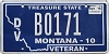 2015 Montana Disabled Veteran graphic # B0171