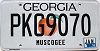 2016 Georgia Peach graphic # PKG9070
