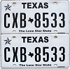 2017 Texas pair #CXB-8533