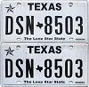 2017 Texas pair #DSN-8503
