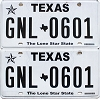 2017 Texas pair #GNL-0601