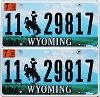 2015 Wyoming pair #29817, Park County