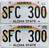 2017 Hawaii Rainbow pair # SFC-300
