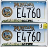 2019 Montana Active Army pair # E4760