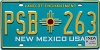 2019 New Mexico #PSB-263