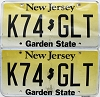 New Jersey Garden State graphic pair # K74-GLT