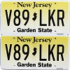 New Jersey Garden State graphic pair #V89-LKR