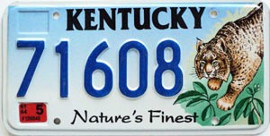 2004 Kentucky Lynx graphic # 71608